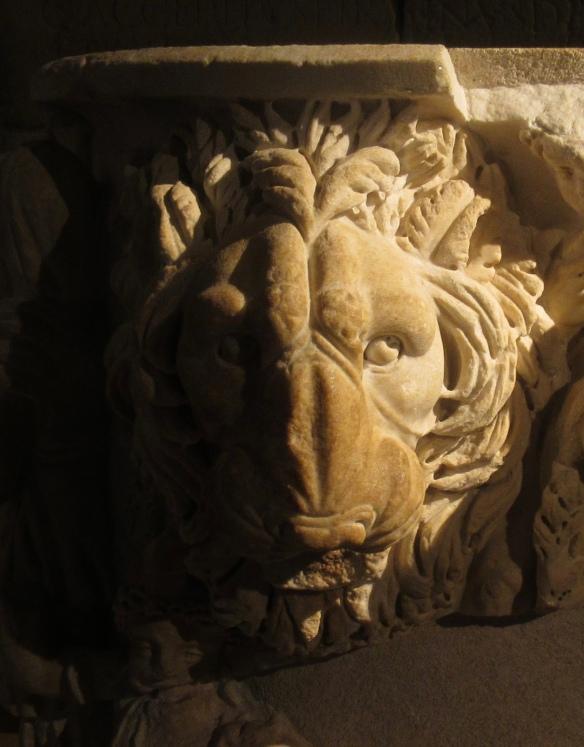 lions of lyon