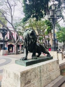 a guardian lion