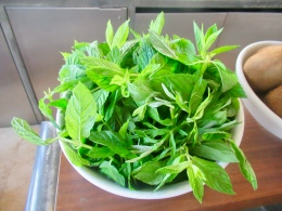 fresh mint for morning smoothies
