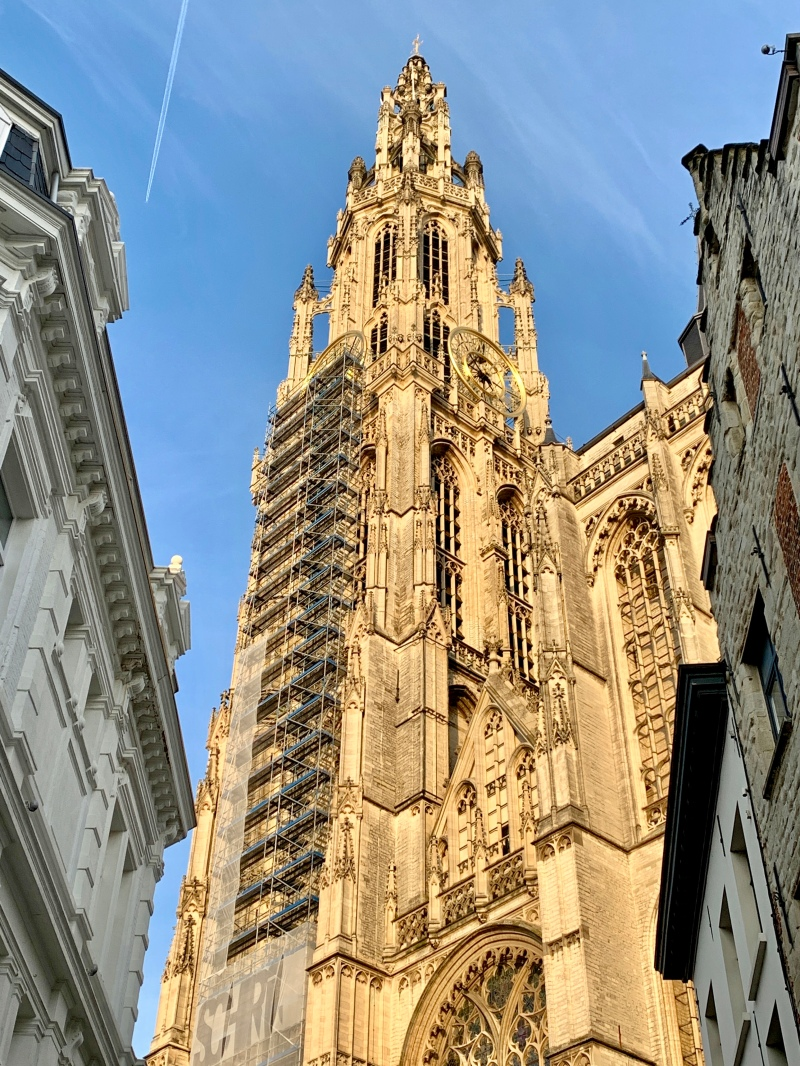 the cathedral in antwerp