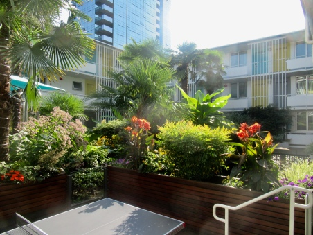 pingpong in the courtyard